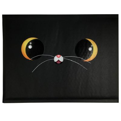 gato negro amigo
